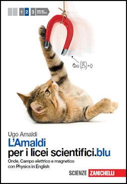 amaldifisicazanichelli2