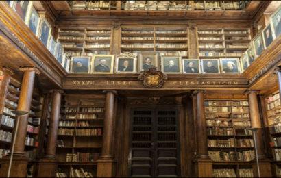 La biblioteca in gioco – Francesco Mazzetta